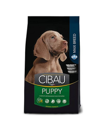 CIBAU Maxi Puppy  Hrana uscata pentru catei de rasa mare 12 + 2 kg GRATIS