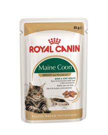 Royal Canin Maine Coon Adult hrana umeda pisica, 12 x 85 g