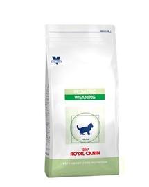 ROYAL CANIN Cat Pediatric Weaning 400 g