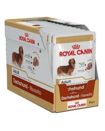 ROYAL CANIN Dachshund Adult 12x85 g