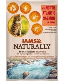 IAMS Naturally Adult Cat cu Somon din Atlanticul de Nord în Sos 85 g