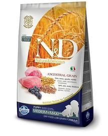 FARMINA N&D Low Grain Puppy Medium & Medium - Hrană uscată cu miel și afine 2.5 kg