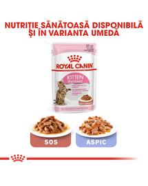 Royal Canin Kitten Sterilised hrana uscata pisica sterilizata junior, 2 kg