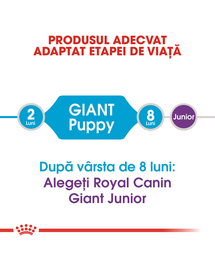 Royal Canin Giant Puppy hrana uscata caine junior etapa 1 de crestere , 15 kg