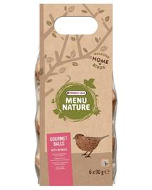 VERSELE-LAGA Gourmet Balls- Bile de hrană pentru păsări sălbatice, cu fructe de pădure 6 buc. 540 g