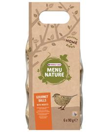VERSELE-LAGA Gourmet Balls- Bile de hrană pentru păsări sălbatice, cu insecte 6 buc. 540 g