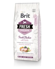 BRIT Fresh Puppy Hrană uscată cu pui și cartofi 2,5 kg