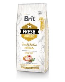 BRIT Fresh Adult Hrană uscată cu pui și cartofi 12 kg