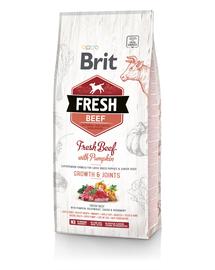 BRIT Fresh Puppy Large Hrană uscată cu vită și dovleac 2,5 kg