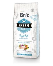 BRIT Fresh Adult Large Hrană uscată cu pește și dovleac 2,5 kg