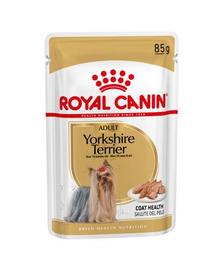 Royal Canin Yorkshire Terrier Adult hrana umeda caine, 12 x 85 g