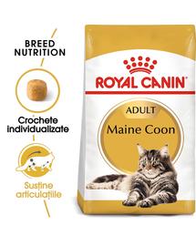 Royal Canin Maine Coon Adult hrana uscata pisica, 10 kg