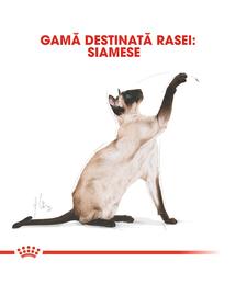 Royal Canin Siamese Adult hrana uscata pisica, 2 kg