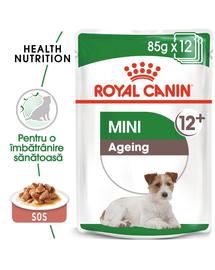 Royal Canin Mini Ageing 12+  hrana umeda caine senior, 12 x 85 g