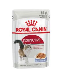Royal Canin Instinctive In Jelly Adult hrana umeda in aspic pentru pisica, 12 x 85 g