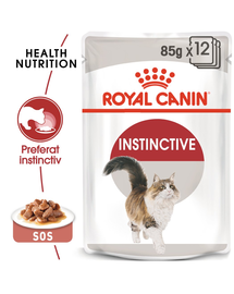 Royal Canin Instinctive In Gravy Adult hrana umeda in sos pentru pisica, 12 x 85 g