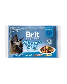 BRIT Premium Cat Dinner Plate file în sos - diverse arome 340 g (4x85 g)