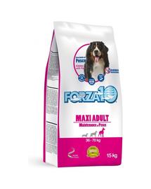 FORZA 10 Maxi Maintenance Hrană uscată pentru câini adulți de talie mare 15 kg