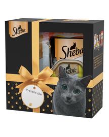 SHEBA Set festiv cu delicii pentru pisici