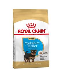 ROYAL CANIN Hrana uscata pentru cainii junior din rasa Yorkshire terrier 15 (2 x 7.5 kg)