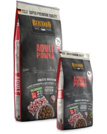 BELCANDO Power hrana uscata pentru cainii foarte activi, femele gestante sau care alapteaza, talie M-XL, 1 kg
