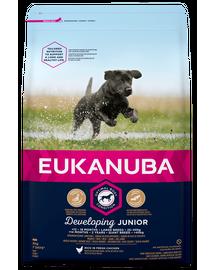 EUKANUBA Developing Junior Large Breed hrana uscata caini juniori talie mare, bogat in pui 3kg