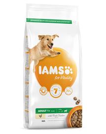IAMS For Vitality Hrana uscata cu pui pentru cainii adulti de talie mare 5kg