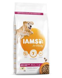 IAMS For Vitality Senior hrana uscata pentru caini seniori de talie mare, cu pui, 12 kg