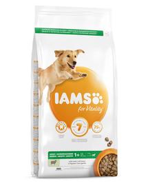 IAMS For Vitality Hrana uscata cu miel pentru cainii adulti de talie mare 12kg
