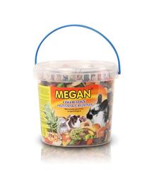 MEGAN Supliment nutritiv cu fructe pentru rozatoare 1l /370g