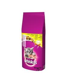 WHISKAS Junior hrana uscata pentru pisoi, cu pui 14 kg + Dr PetCare MAX Biocide zgarda protectie pisici impotriva puricilor si a insectelor 43 cm GRATIS