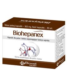 BIOWET Biohepanex capsule pentru caini si pisici care sustin funcțiile hepatice 40 buc.