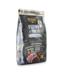 BELCANDO Finest Grain Free Puppy hrana uscata pentru pui, varsta 4 luni+, 4 kg