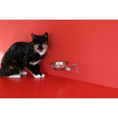 Dieta BARF este considerata de unii cel mai natural mod de nutritie pentru pisica. Insa are si adversari.
