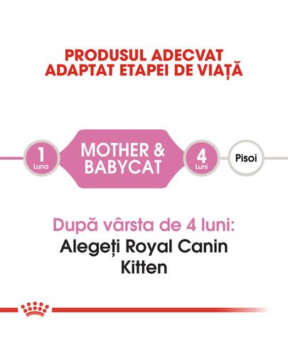 Royal Canin  Mother & BabyCat hrana uscata pisica mama si puii pana la 4 luni, 4 kg