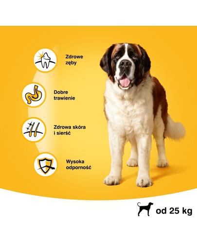 PEDIGREE Vital Protection Adult Large hrana uscata caini adulti de talie mare, cu vita 15 kg