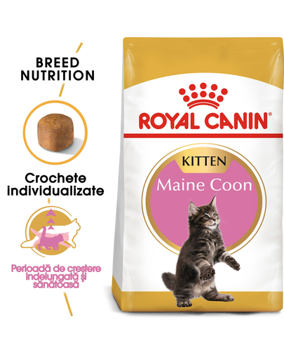 ROYAL CANIN Kitten maine coon 4 kg
