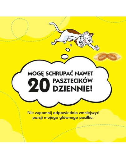 DREAMIES Recompense pisici, cu brânză 180g