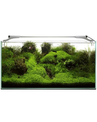 AQUAEL Leddy Slim 36W Plant 100-120 cm, culoare alb fera.ro