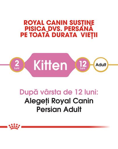 Royal Canin Persian Kitten hrana uscata pisica junior, 2 kg