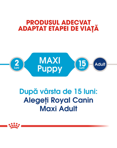 Royal Canin Maxi Puppy hrana uscata caine junior, 4 kg
