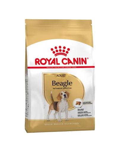 Royal Canin Beagle Adult hrana uscata caine, 3 kg