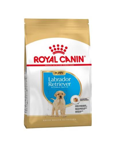 Royal Canin Labrador Puppy hrana uscata caine junior, 3 kg