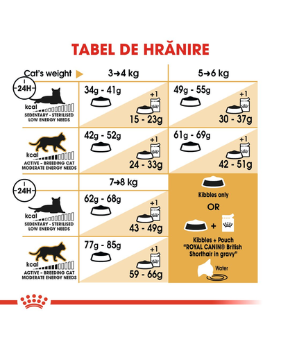 Royal Canin British Shorthair Adult hrana uscata pisica, 2 kg