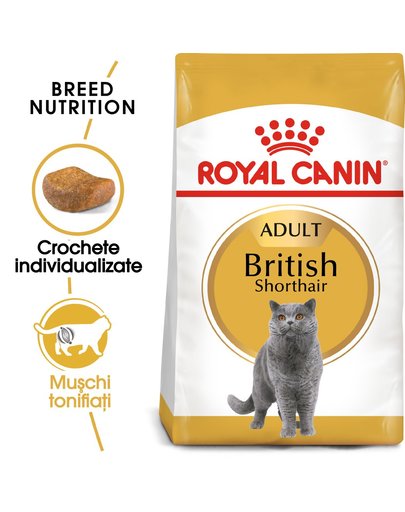 Royal Canin British Shorthair Adult Hrană Uscată Pisică 4 kg