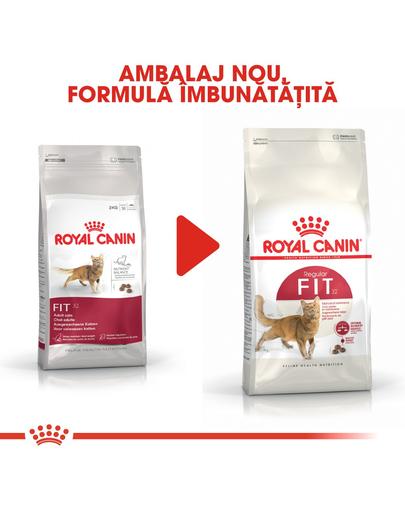 Royal Canin Fit32 Adult hrana uscata pisica cu activitate fizica moderata, 400 g