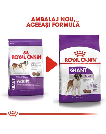 Royal Canin Giant Adult hrana uscata caine, 15 kg