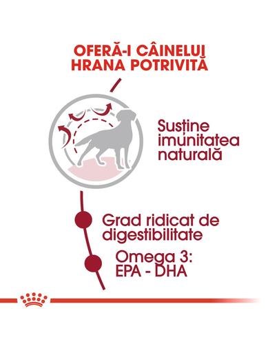 ROYAL CANIN Medium Adult hrana uscata caine, 4 kg