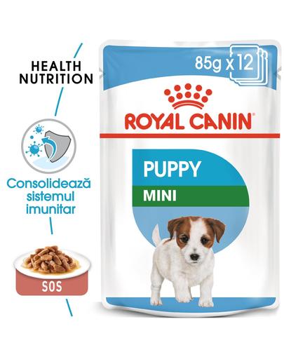 Royal Canin Mini Puppy hrana umeda caine junior, 12 x 85 g