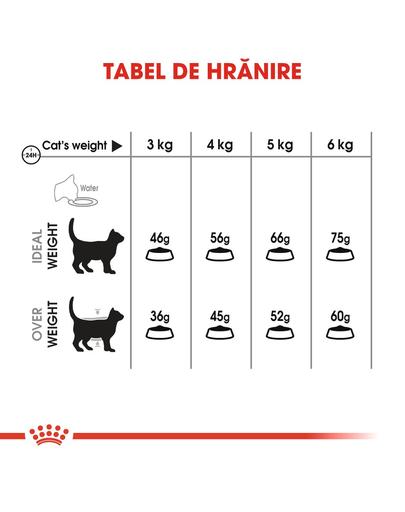 Royal Canin Oral Care Adult hrana uscata pisica pentru reducerea formarii tartrului, 3.5 kg